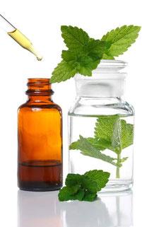 Phytotherapie Pflanzentherapie Bioforce Bio Strath Zeller Schwabe
