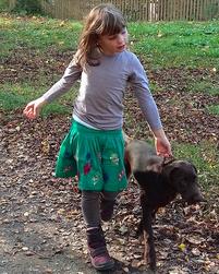 Hund geht bei Fuß bei Simsammlerbim