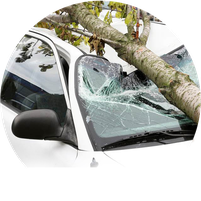 comprehensive coverage personal auto insurance kissimmee florida