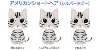 3種類の表情が拡大します