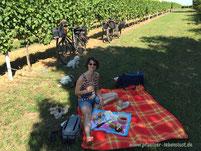 Pfalz Picknick Schmackerl Genuss Ausflug Tour Lebensfreude Lebenslust