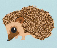 Hedgehog Printed Vinyl Sticker