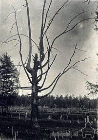 Кэрэх. Фото КЯР. 1925-30 гг.