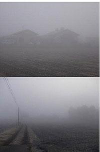 昨年の霧の中との比較