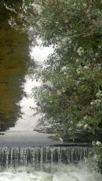 Une éthique, une source, une onde d'eau pure pour soi.