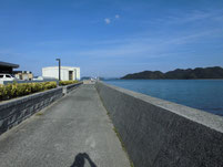 仙崎漁港 センザキッチン横護岸 の写真