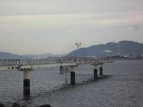 フィシィングパーク光 釣り桟橋