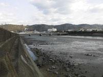 富田川河口 上流側