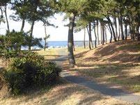 さつき松原海岸 遊歩道