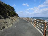 狩尾岬 遊歩道