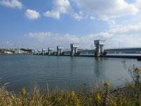 遠賀川河口堰下流付近