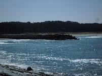 花鶴川河口周辺 左岸側波止