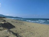 汐入川河口部 宗像市側砂浜