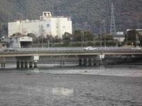 富田川河口 新開橋周辺