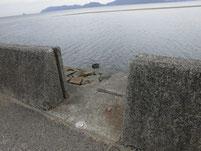 光港 島田川沿い 階段