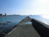 勝浦漁港 右側の波止
