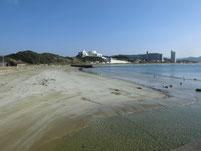 勝浦漁港 港内 砂浜