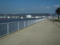 晴海親水公園 横護岸 左側の護岸