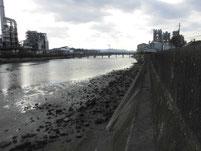 富田川河口 下流側