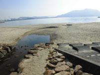 長田海浜公園 流れ込み