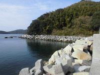 戸田漁港(桑原漁港) 地磯