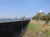 徳山港 港公園横