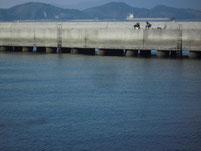 粭島漁港 外波止下スリット
