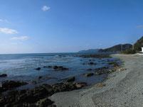 勝浦漁港 外波止右側 地磯