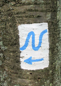 Logo des Neckarsteigs