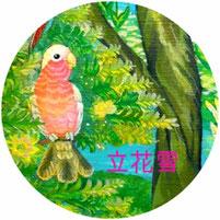 立花雪 YukiTachibana      楽園の鳥達