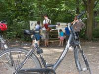 Mit dem Fahrrad auf Bildungstour im Leipziger Auwald. Foto: René Sievert