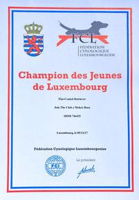 Champion des Jeunes de Luxembourg