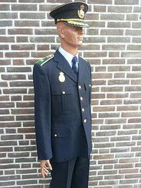 Plaatsvervangend commissaris Nationale Politie