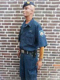 Nationale Politie, Mobiele eenheid, 1991 - 2001