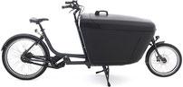 Babboe Pro Bike-E Lasten e-Bike 2020