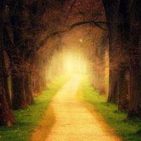Der Weg des Vertrauens