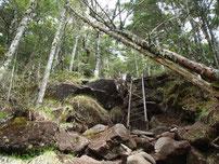 八ヶ岳 自炊体験 登山