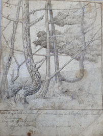 """Emile Brunet. """"Claouey. Bassin d'Arcachon"""" .Crayon sur papier."""
