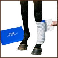 Kryo Kompakt Horse-Set STÜBBEN