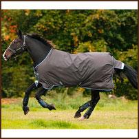 HORSEWAR Amigo Bravo 12 Lite 100g