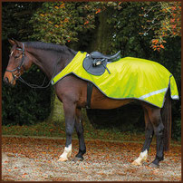 Leuchtdecke HORSEWARE Amigo
