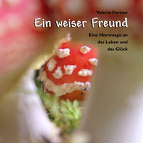 Valerie Forster, Buch, Books on Demand, Cover, Ein weiser Freund