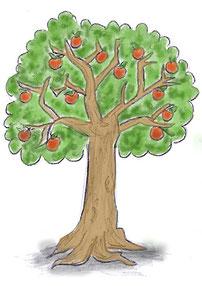 Apfelbaum Zeichnung
