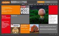 """Der Pilz als Titelfoto im November 2015 bei Fotoschwarm.de """"CHIP FOTO VIDEO"""""""