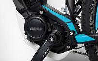 Der Yamaha-Motor bietet kräftige Beschleunigung, eine Abdeckung schützt ihn vor Fremdkörpern aller Art