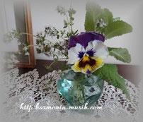庭の花と・・
