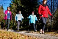 Vier Frauen beim Nordic-Walking im Wald