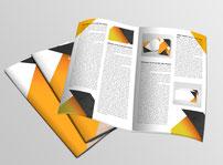 Rapports d'activité annuel  imprimés par RBS86, à Poitiers