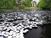 Eau du jardin public de bordeaux pour cette installation d'art contemporain de Laurent Valera