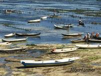 Bild: Wellen am Devil´s Tear auf Nusan Lembongan